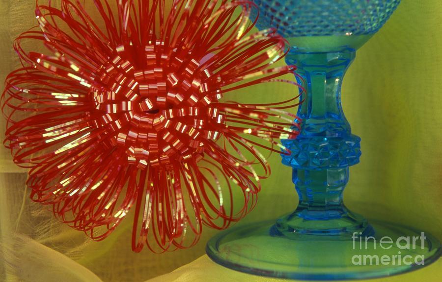 Color Photograph - Goblet Bow by Tamarra Tamarra