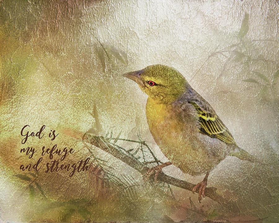 Sentiment Digital Art - God Is My Refuge by Ramona Murdock