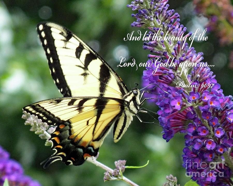 Gods Beauty - Eastern Tiger Swallowtail Photograph