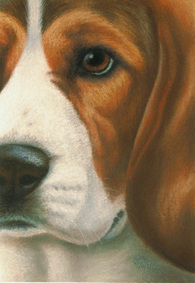 Dog Pastel - Goggie Beagle by Karen Coombes