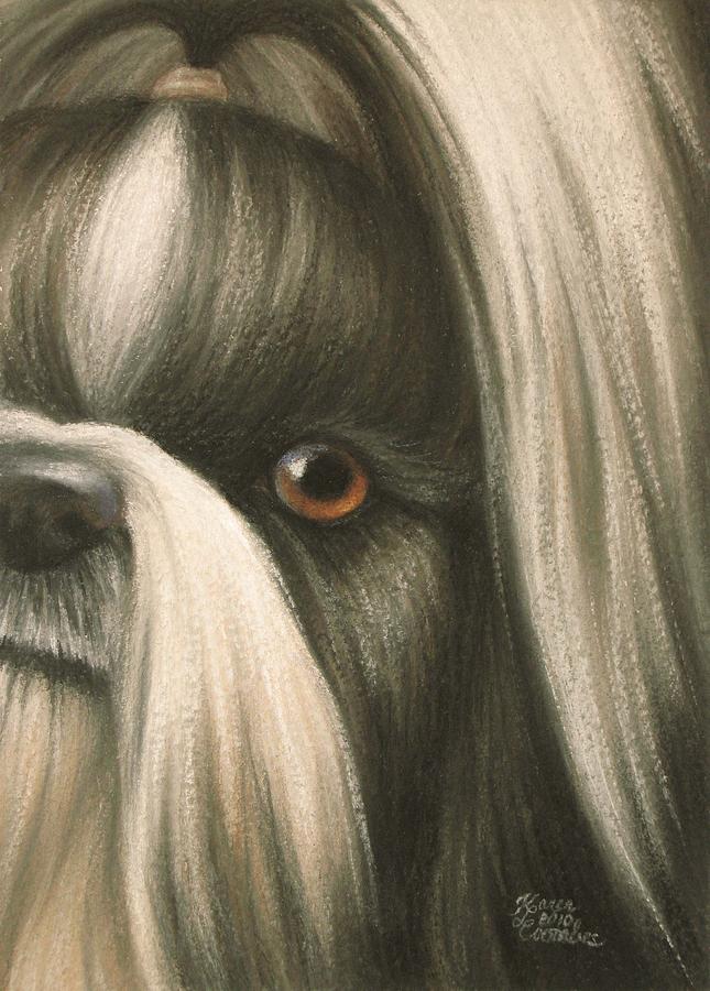 Dog Pastel - Goggie Shih Tzu by Karen Coombes