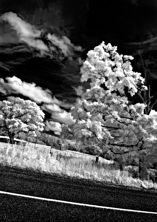 Infrared Photograph - Goin Down The Road Buzzed by Steve Harrington