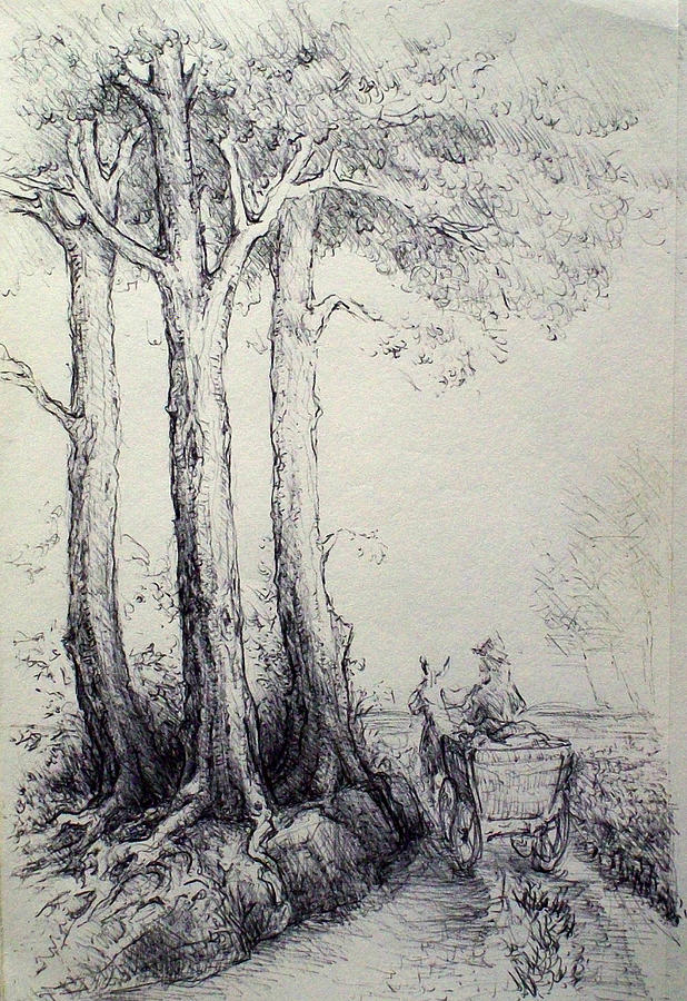 Donkey Cart Drawing - Going Home by Georges St Pierre