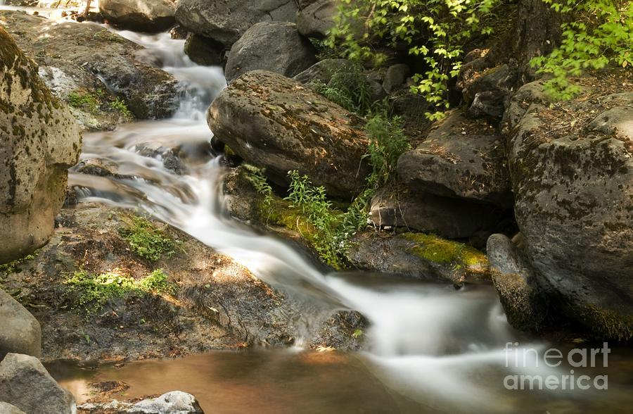 Landscape Photograph - Going To Deer Creek by Richard Verkuyl