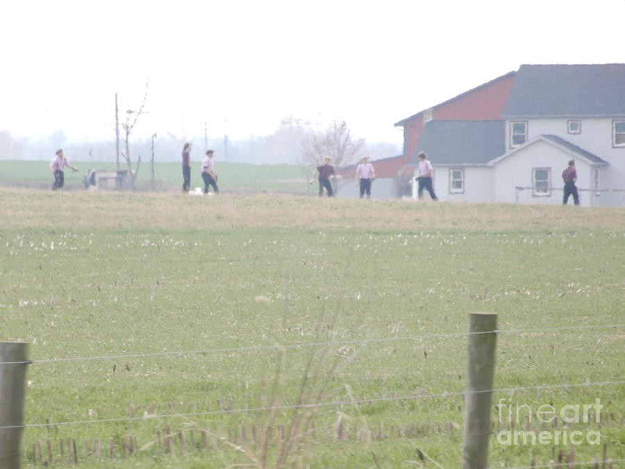 Amish Photograph - Going To The Barn by Christine Clark