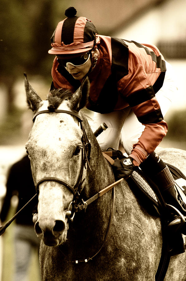 Horse Race Digital Art - Going To The Start by Jana Goode