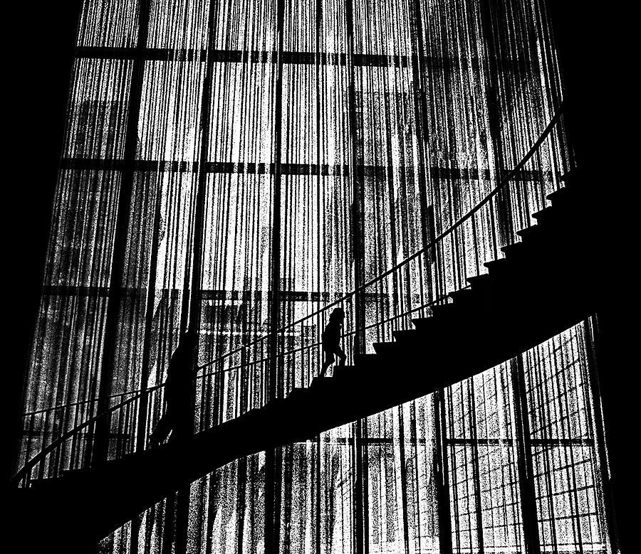 Going Up Photograph by Dennis Sullivan