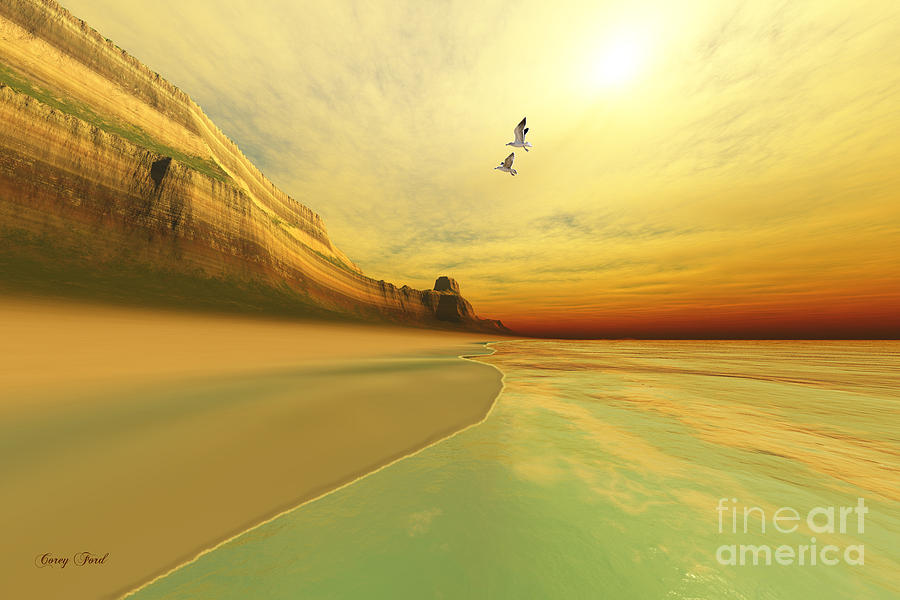 Seagull Painting - Gold Coast by Corey Ford