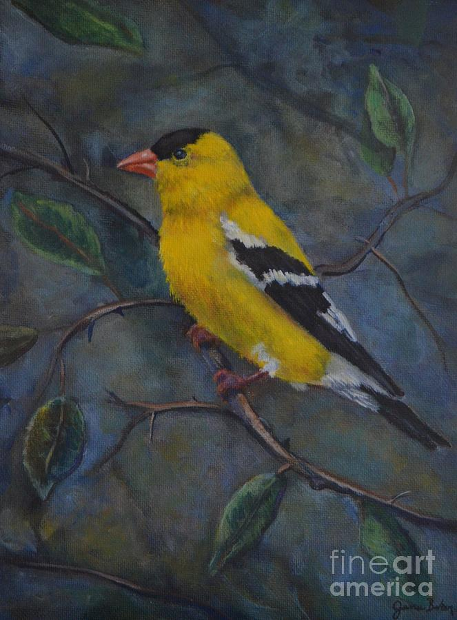 Bird Painting - Gold Finch by Jana Baker