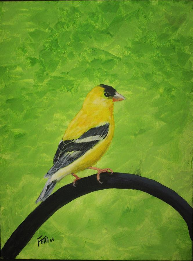 Bird Painting - Gold Finch by Rich Fotia