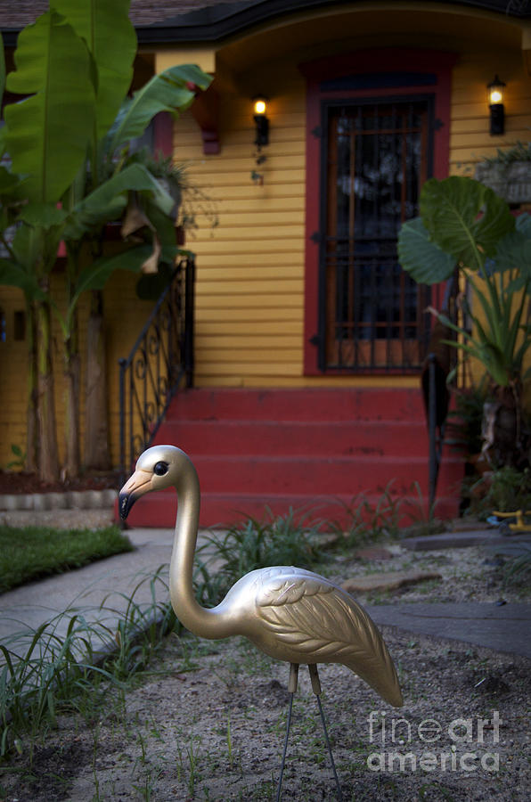New Orleans Photograph - Gold Flamingo by Jeanne  Woods