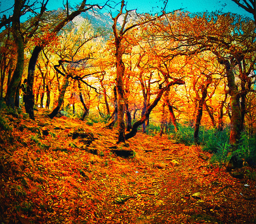 Forest Photograph - Gold by Ivan Gomez