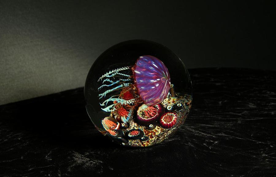 Gold Ruby Sideways Jellyfish Glass Art by R Satava