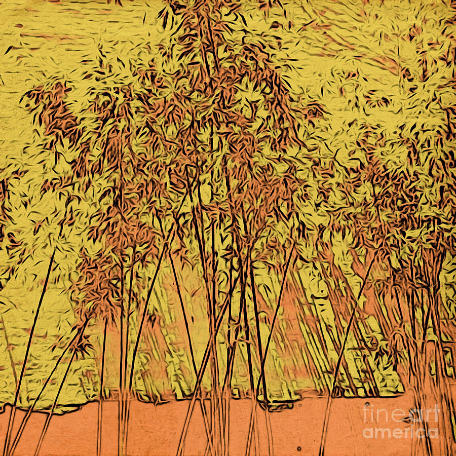 Golden Bamboo Garden Photograph by Onedayoneimage Photography