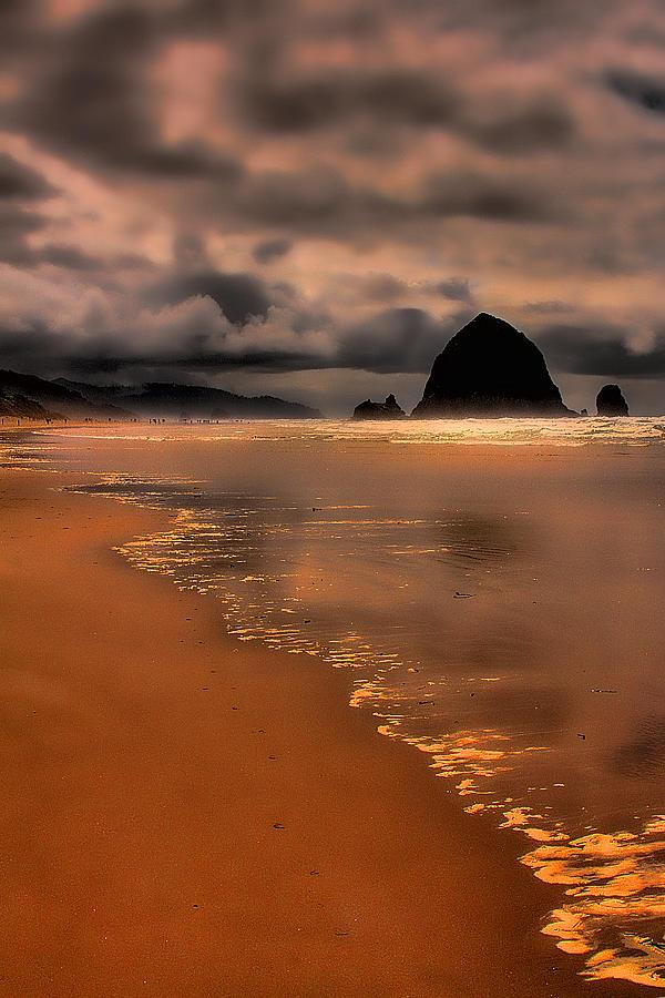 Oregon Photograph - Golden Beach by David Patterson