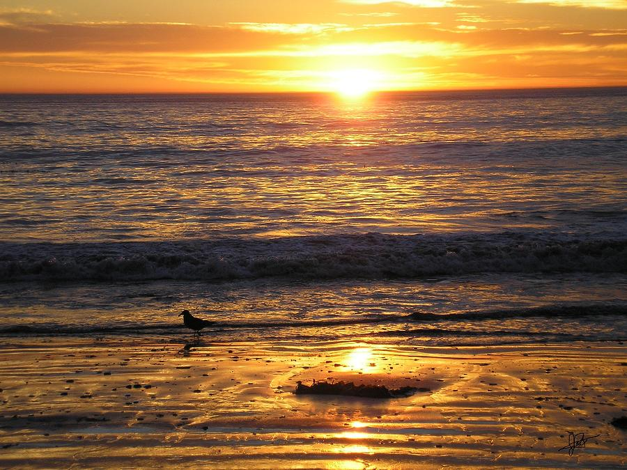 Southbay Sunset Beach Gold California La Palos Verdes Cadry Pastel Art Photograph - Golden Beach by J Perez