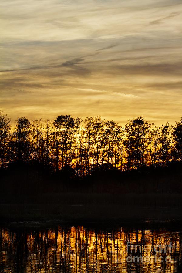Sun Set Photograph - golden Dusk by Steffen Krahl