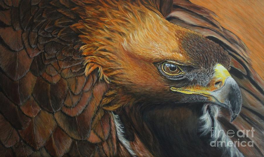 Golden Eagle by Bob Williams