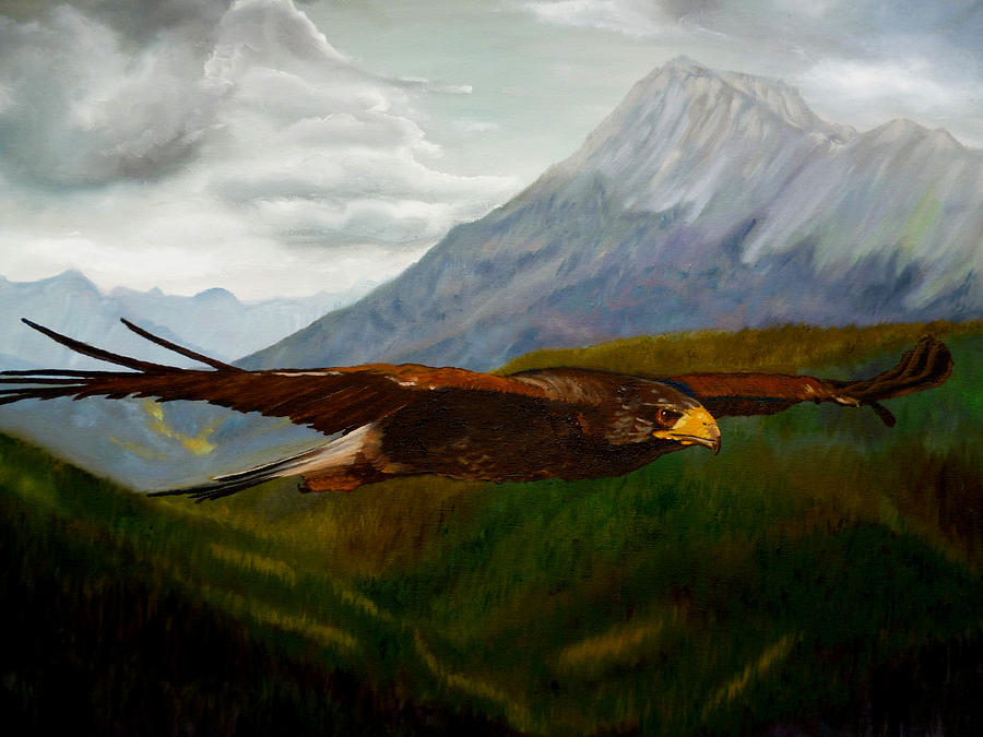 Golden Eagle by Petra Stephens