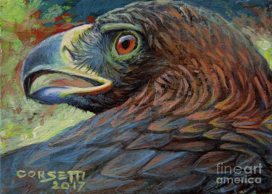 Golden Eagle by Rob Corsetti