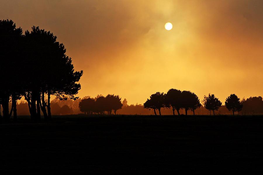 Sunset Photograph - Golden Evening Light by Aidan Moran