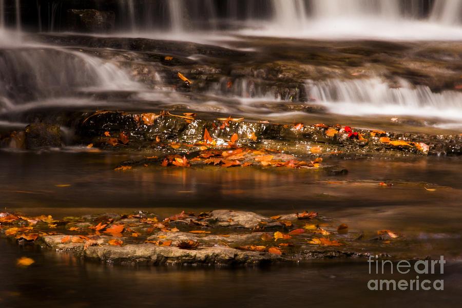 Waterfall Photograph - Golden Falls by Melissa Petrey
