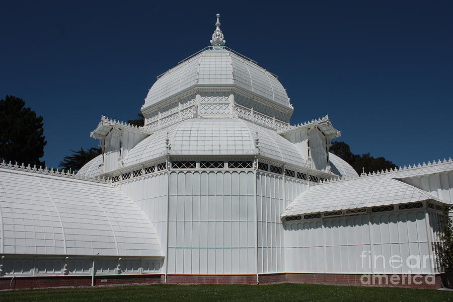 White Photograph - Golden Gate Conservatory by Carol Groenen