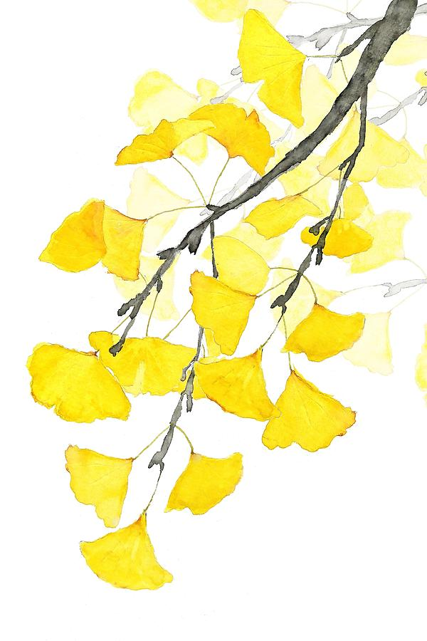 Golden Ginkgo Leaves Painting by Color Color