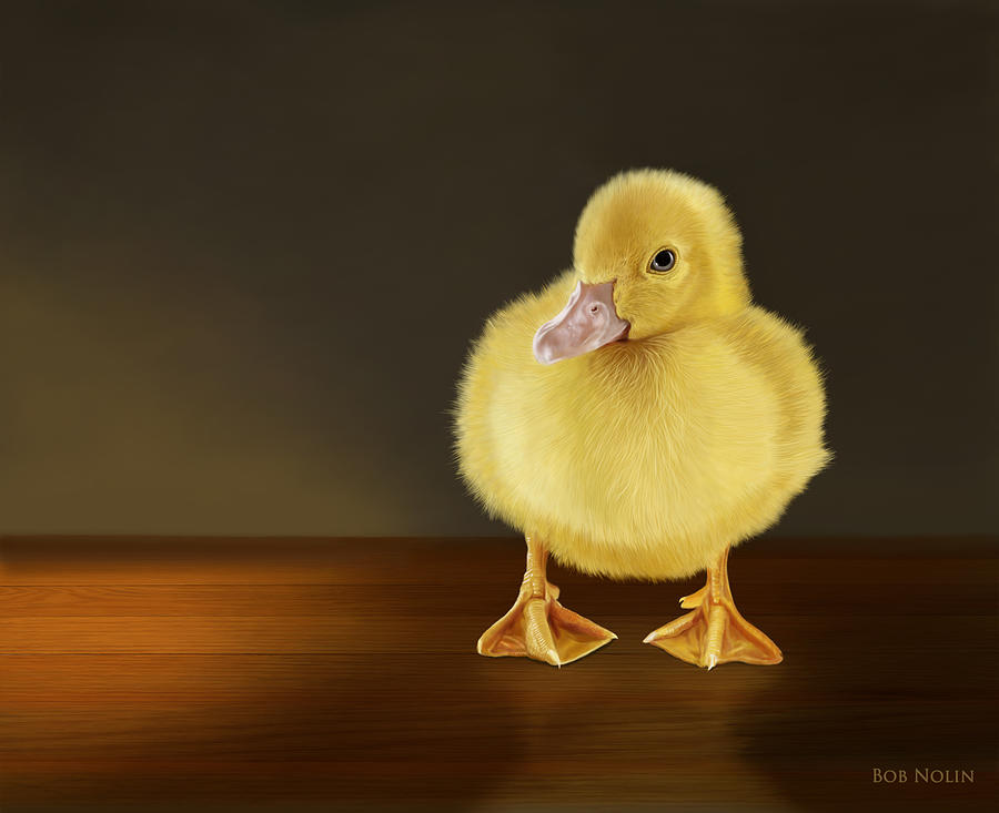 Duckling Digital Art - Golden Glow by Bob Nolin