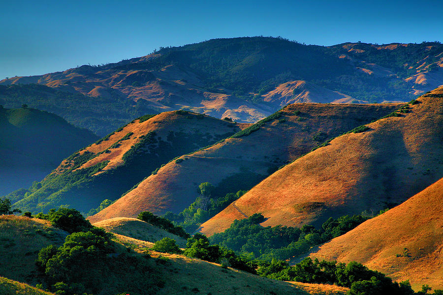 Usa Photograph - Golden Hills by Steven Ainsworth