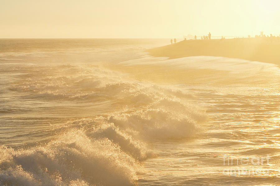 Golden Hour At The Wedge Photograph