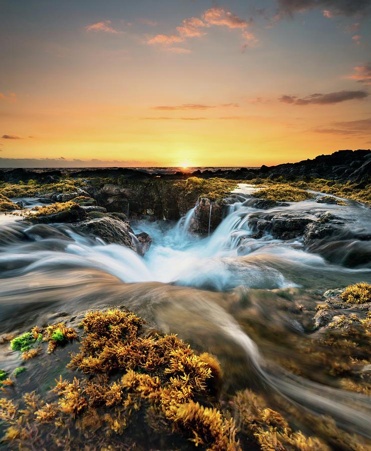 Landscape Photograph - Golden Hour by Christopher Johnson