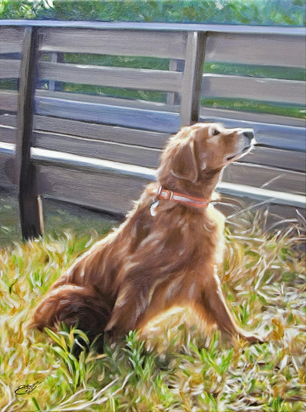 Pet Dog Portrait Painting - Golden In The Grass by William Everly