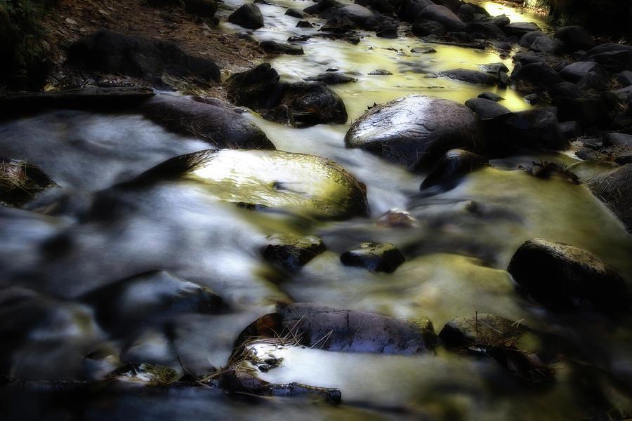 Golden Light by Carl Simmerman