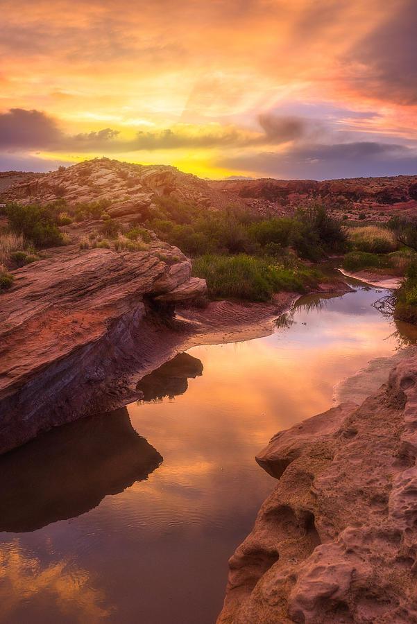 Sunset Photograph - Golden Light in Moab by Darren White