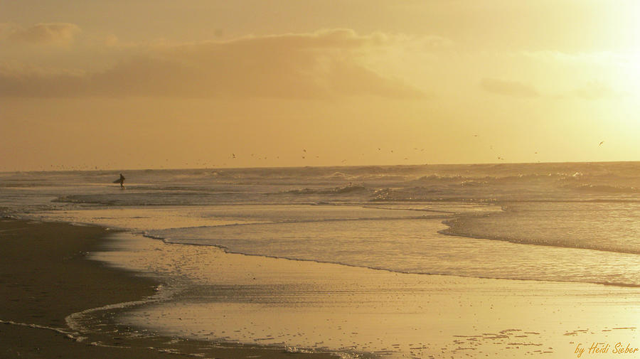 Seascape Photograph - Golden light surfer by Heidi Sieber