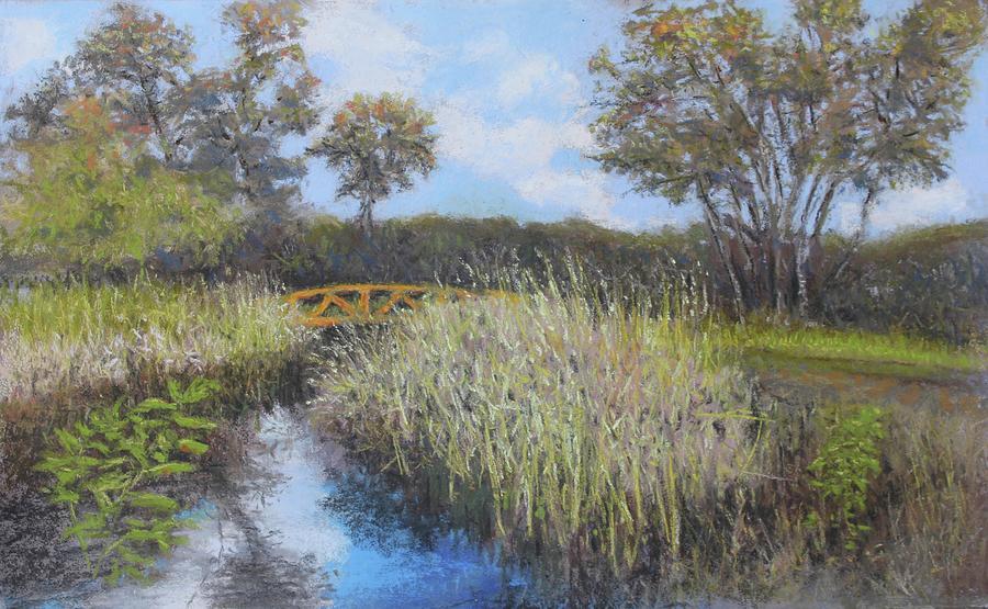 Golden Marsh by Dennis Sullivan