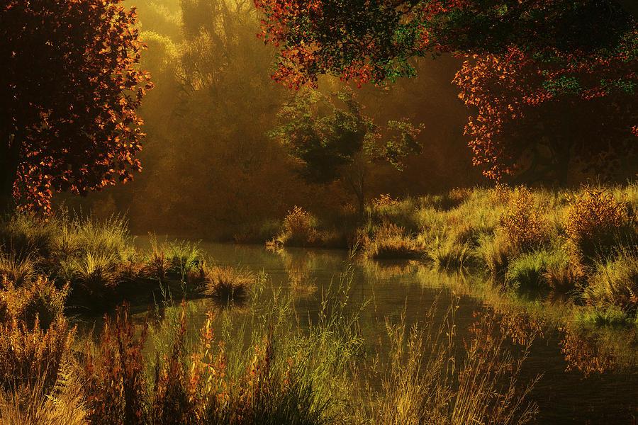 Autumn Digital Art - Golden by Melissa Krauss