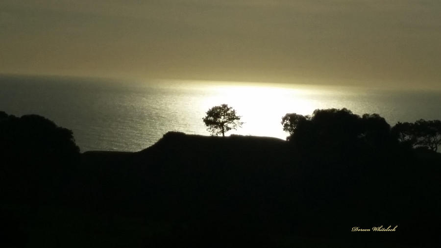 Golden Photograph - Golden Ocean Sunset by Doreen Whitelock