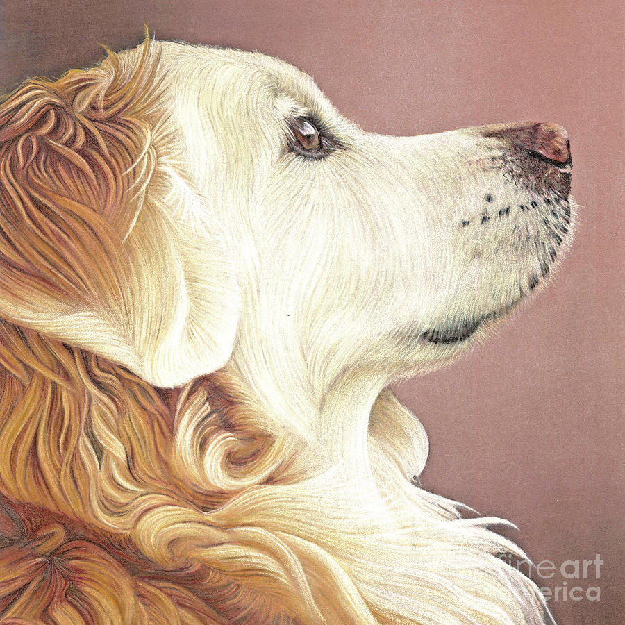 Golden Retriever Painting - Golden Oldie by Donna Mulley