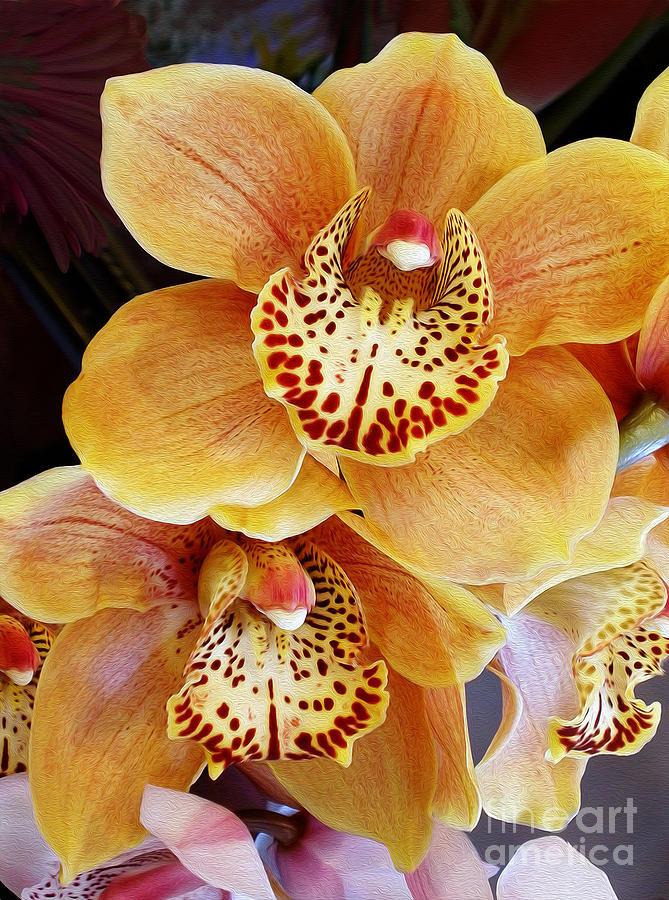 противном золотая орхидея цветок фото ответственная процедура