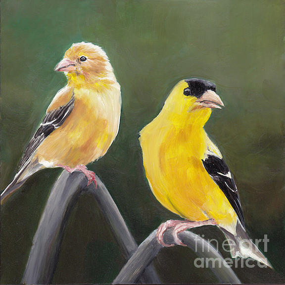 Bird Painting - Golden Pair by Charlotte Yealey