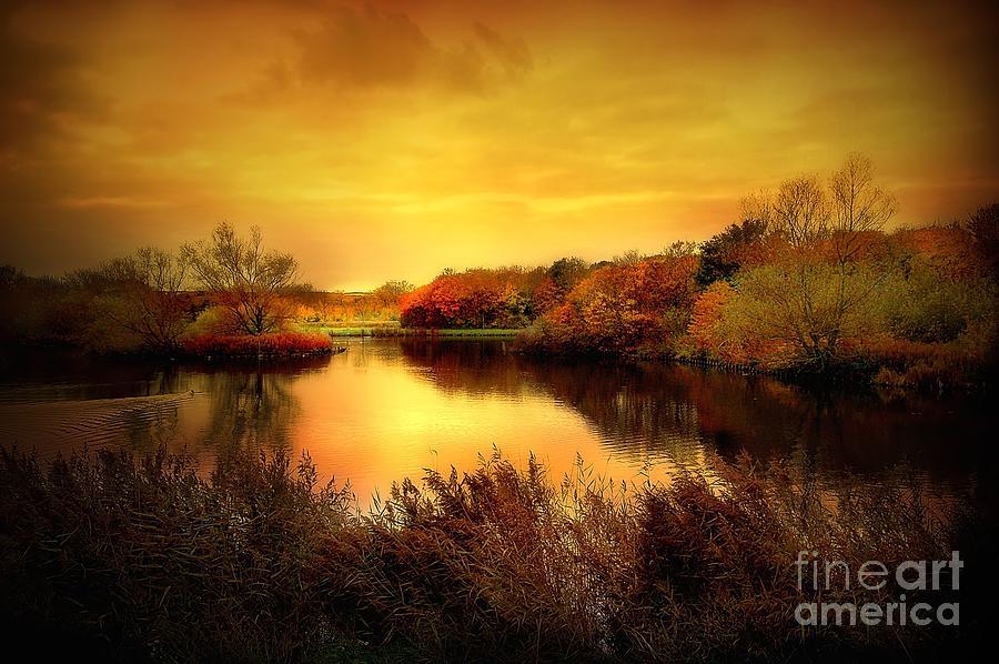 Pond Photograph - Golden Pond by Jacky Gerritsen