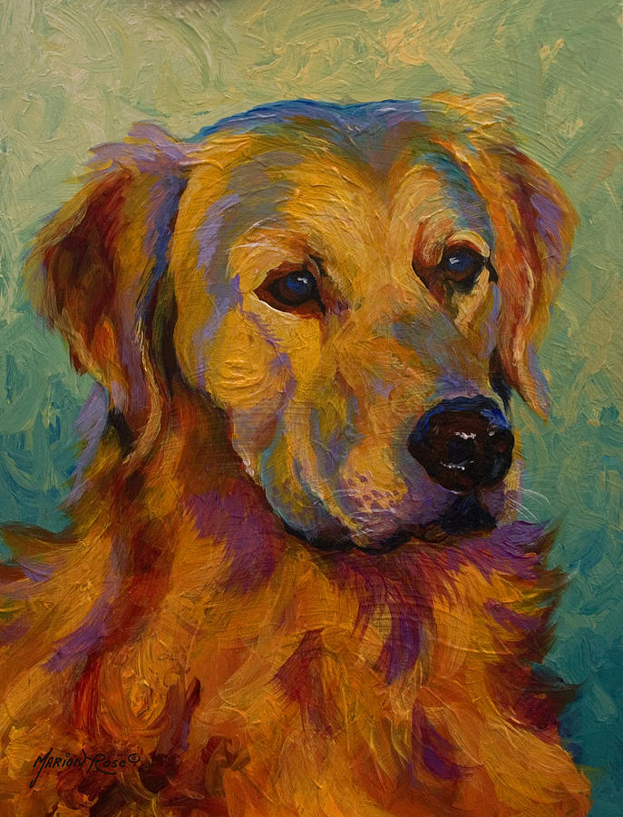 Golden Retriever Painting By Marion Rose
