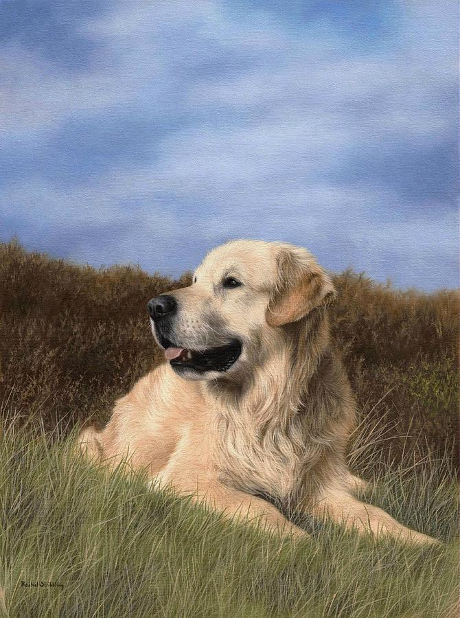 Dog Painting - Golden Retriever Painting by Rachel Stribbling