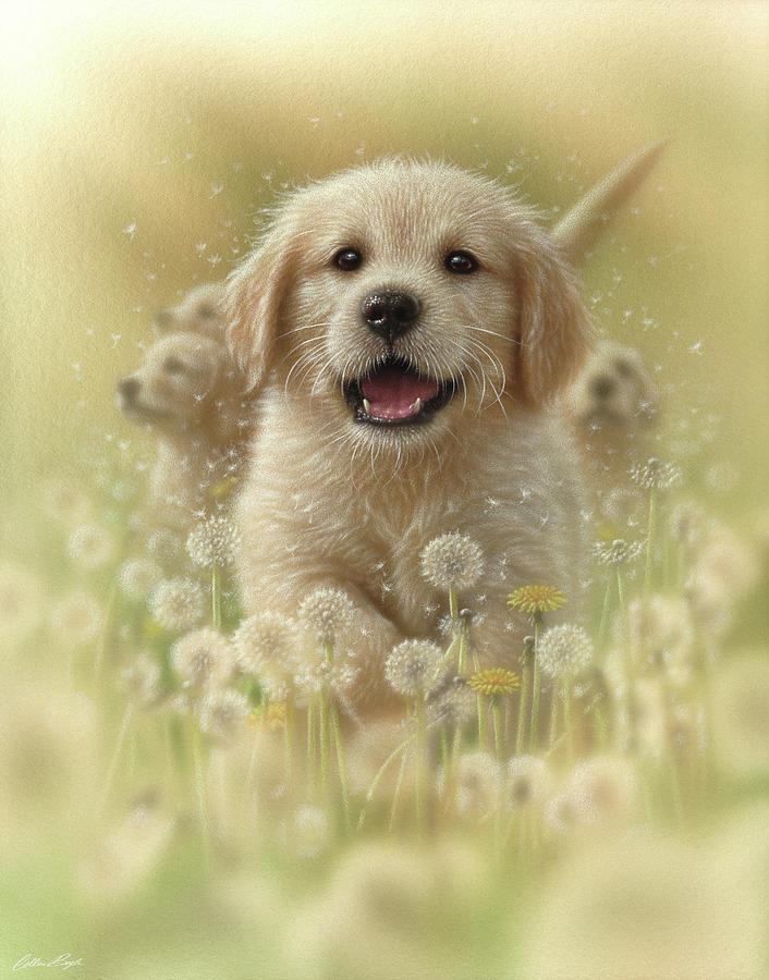 Golden Retriever Puppy - Dandelions