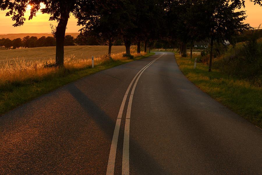 Golden Road Photograph