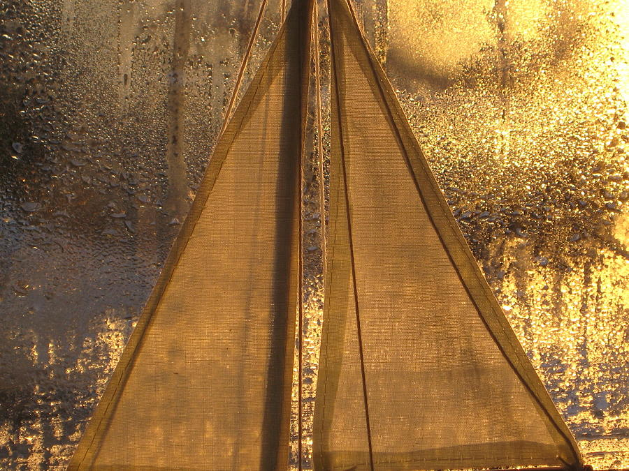 Golden Photograph - Golden Sails by Lori  Secouler-Beaudry