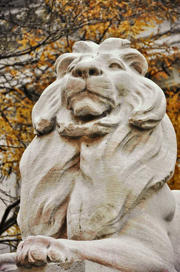 New Photograph - Golden Lion Strength by JAMART Photography
