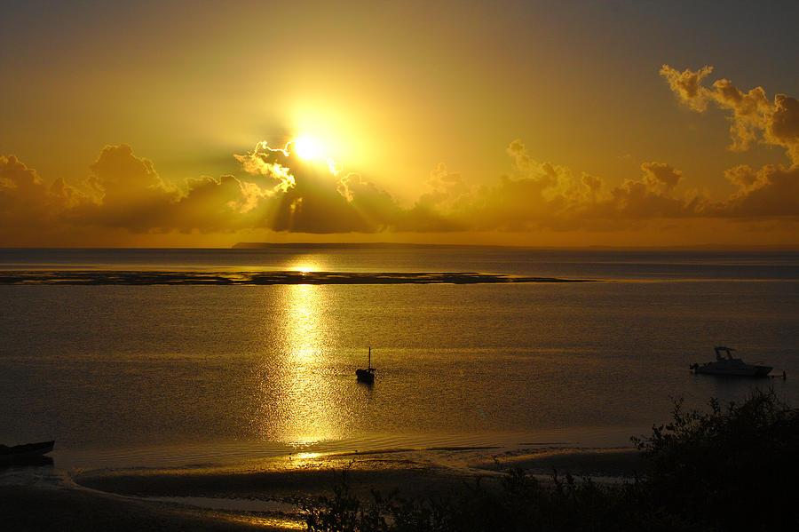 Golden Sunrise by Jeremy Hayden